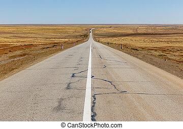 asphalt road in the mongolian steppe