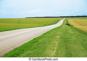 Asphalt road leaving afar and of fields with agriculture plants