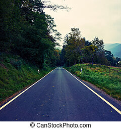 asphalt road. road in forest