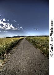 Asphalt road through field