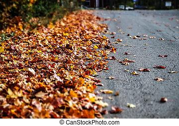 Asphalt road with brown leaves on the side, autumn landscape.
