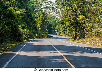 Asphalt road with nature and wildlife views in the middle of the jungle in Thailand National Park.