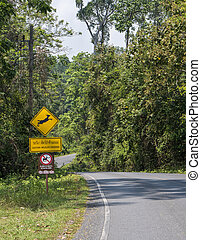 Asphalt road with Wildlife crossing sign. Nature and wildlife views in the middle of the jungle in Thailand National Park.