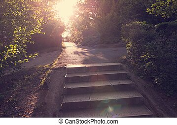 Asphalt stairs with sunshine