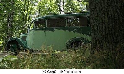 asphalte, vendange, forêt verte, voiture, noir, blanc, route