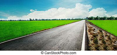 asphaltstraße, durch, der, grünes feld, und, wolkenhimmel, auf, blauer himmel, in, übersommern tag