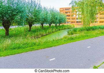 asphaltstraße, neben, a, see, mit, bäume