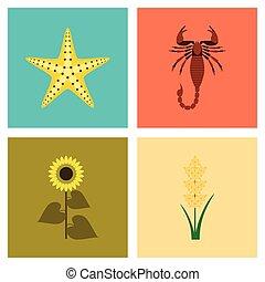 assembly flat Illustrations tropical starfish Scorpio...