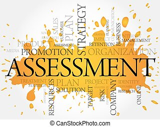 ASSESSMENT word cloud, business concept
