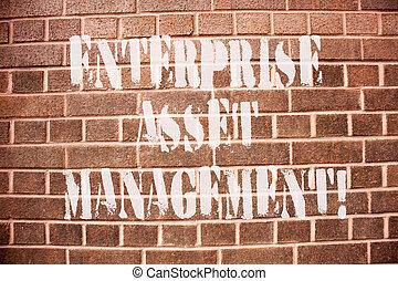 assets., fotografia, pokaz, przedsięwzięcie, znak, cenny nabytek, tekst, konceptualny, analysisaging, lifecycle, management., fizyczny