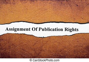 Assignment of publication rights