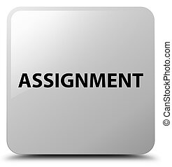 Assignment white square button