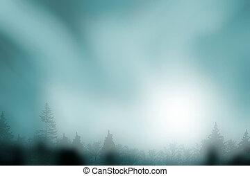 assombrado, floresta, nebuloso