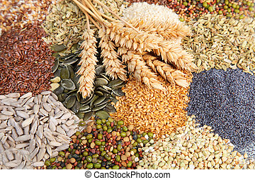 Assorted edible seeds with ripe ears of wheat including whole and dehusked sunflower, sesame, poppy, linseed, pulses and legumes