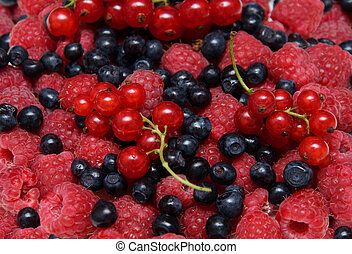 Assorted fresh berries - Background of assorted fresh...