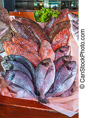 Assorted fresh caught fish at outdoor seafood market