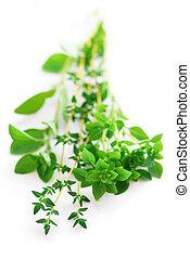 Assorted herbs - Bunch of fresh assorted herbs - basil, ...