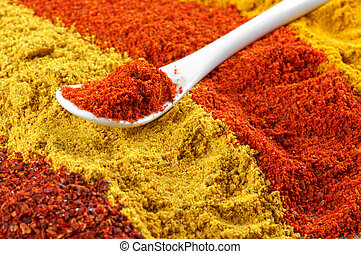 Assorted powder spices - Spoon with paprika on assorted...