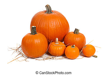 Assorted pumpkins with straw on white