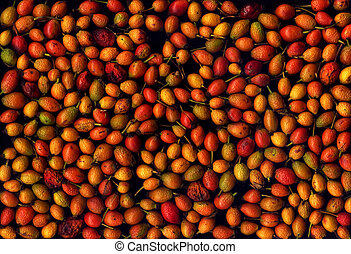 Assorted rose hips on a black background
