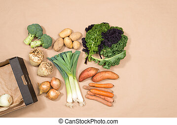 Assorted Vegetables and a Cardboard Box with Copy Space