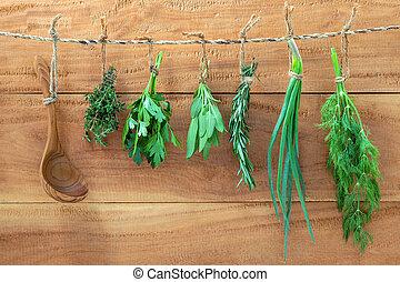 assortito, appendere, erbe, , cipolla, e, aneto, e, timo, per, condimento, concetto, su, rustico, vecchio, legno, fondo.