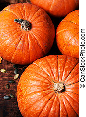 Assortment of autumn pumpkins. Frame with pumpkins on a wooden table.