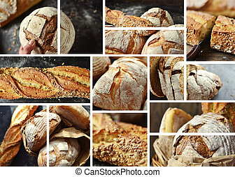 Assortment of bakery products. Wheat, buckwheat, yeast-free bread. Delicious, crispy and beautiful bread. Food collage.