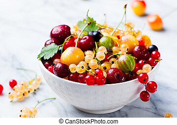 Assortment of fresh berries in white bowl