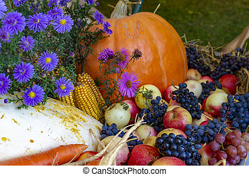 Assortment of fresh fruit and vegetables