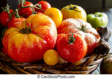 Assortment of Fresh Heirloom Tomatoes - Assortment of...