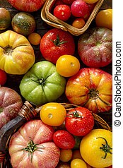 Assortment of Fresh Heirloom Tomatoes - Colorful assortment...