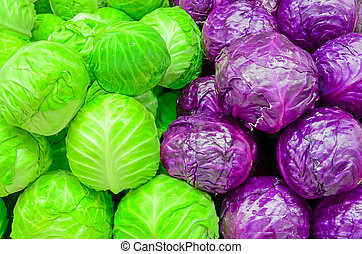 Assortment of organic red and green cabbage heads close-up ...