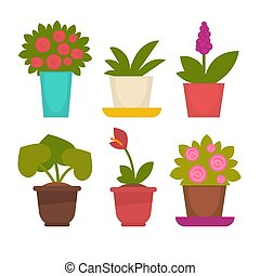 Assortment of potted flowers - Vector illustration of...