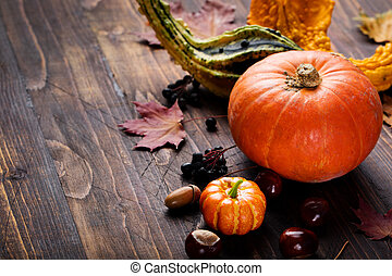 Assortment of pumpkins with autumn leaves on a wooden background Copy space
