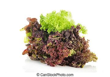 Assortment salad