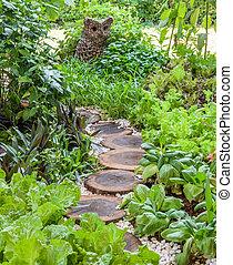 Assortment vegetable garden