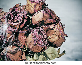 assustador, flores, secado