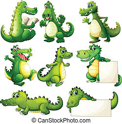 assustador, oito, crocodilos