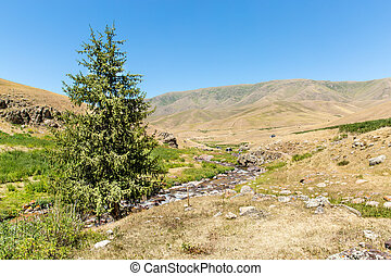 Assy plateau in Tien-Shan mountain in Almaty, Kazakhstan, Asia at summer. Nature of green trees and lake