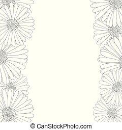 Aster, Daisy Flower Outline Border