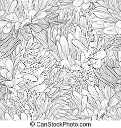 aster, seamless, fondo negro, flores blancas