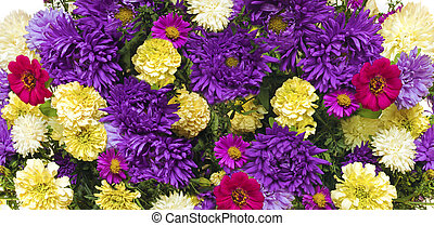 Asters and marigolds.