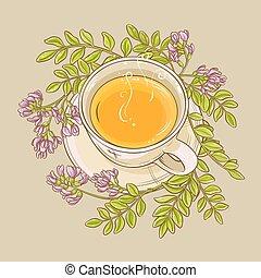 astragalus tea illustration