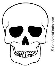 astratto, bianco, cranio, isolato
