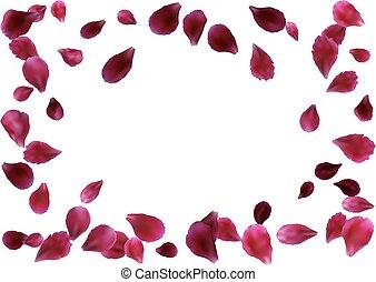 astratto, fondo, con, volare, rosa, rosso sorto, petali
