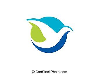 astratto, volare, vettore, logotipo, uccello, icona