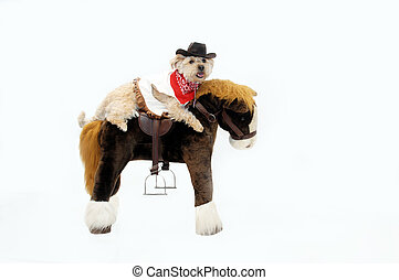 Silkypoo dog rides astride a stuffed pony. She is dressed in western wear complete with red bandana and cowboy hat.