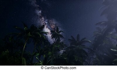Astro of Milky Way Galaxy over Tropical Rainforest. Elements...