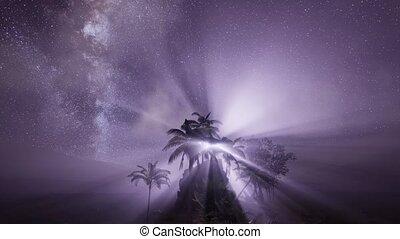 astro, sur, exotique, rainforest., manière, laiteux, galaxie